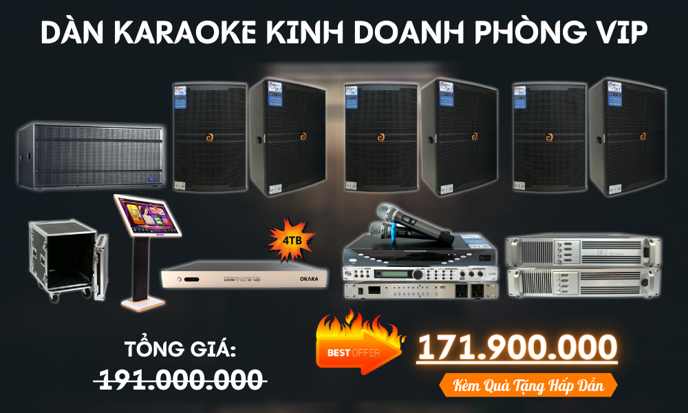 Dan-karaoke-kinh-doanh-phong-VIP